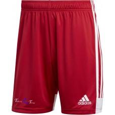 Teikyo Team Training Shorts rot